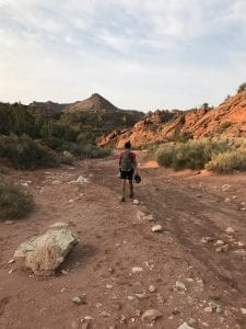 north coyote buttes trail