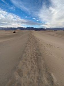 mesquite sand dune, death valley