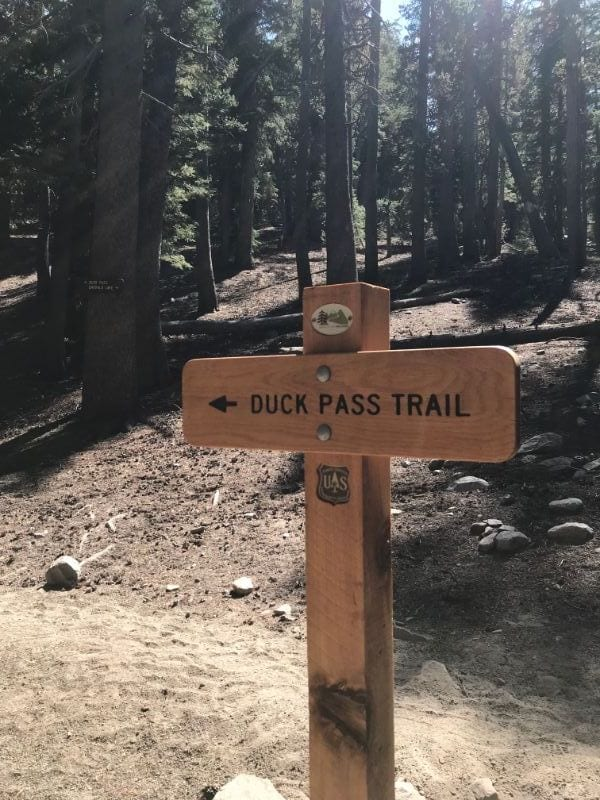duck pass trail