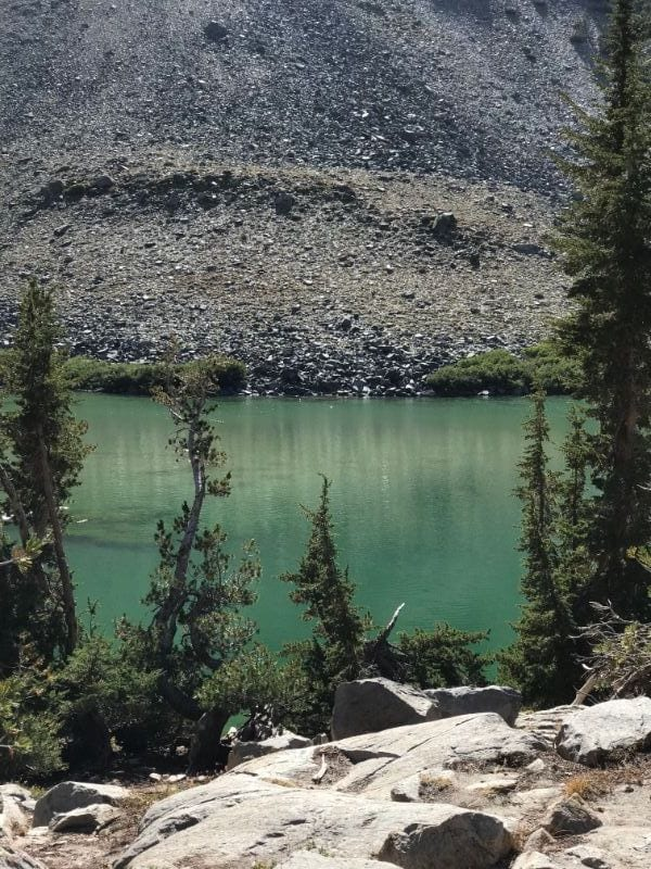 barney lake green color
