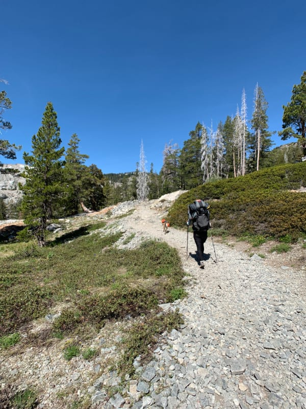 Tiff_Kokopelli_Tahoe 29