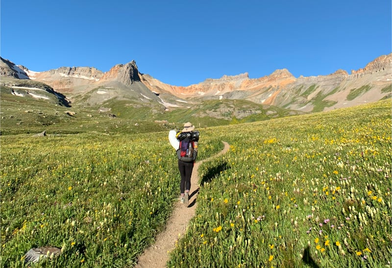 fields of wildflowers on ice lake trail to ice lake in san juan mountains colorado